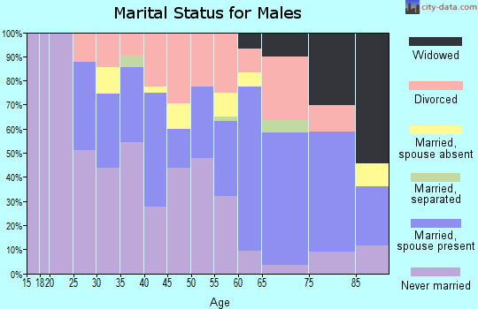 Zip code 46403 marital status for males