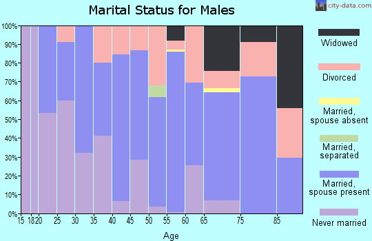 Zip code 46555 marital status for males