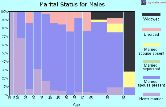 Zip code 46573 marital status for males