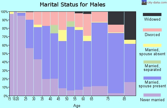 Zip code 46637 marital status for males