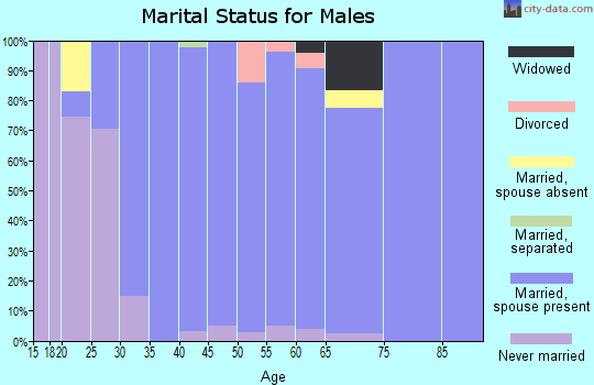 Zip code 46814 marital status for males