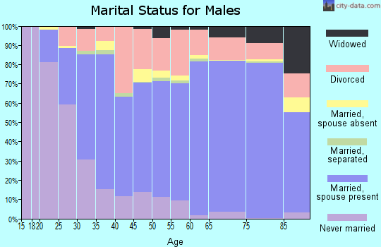 Zip code 46902 marital status for males