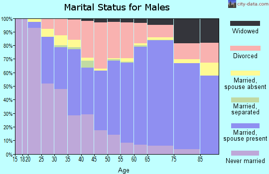 Zip code 46970 marital status for males