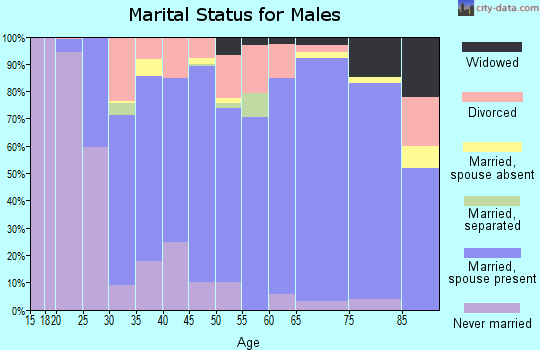 Zip code 46975 marital status for males