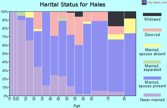 Zip code 47043 marital status for males