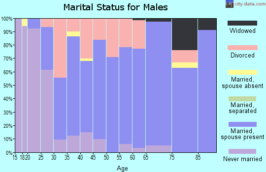 Zip code 47330 marital status for males