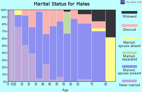 Zip code 47340 marital status for males