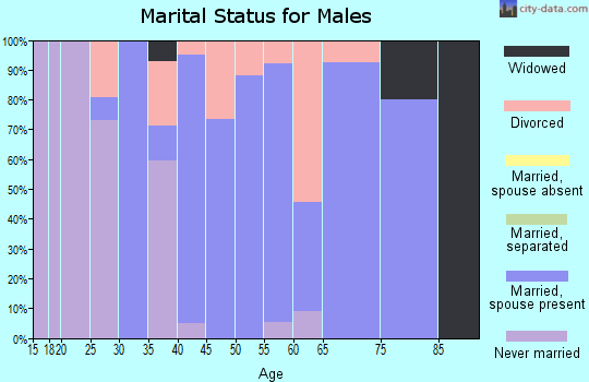 Zip code 47354 marital status for males