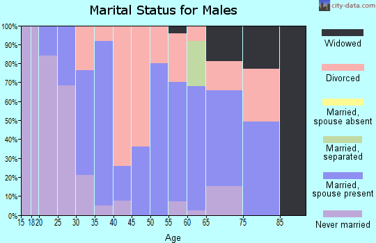 Zip code 47384 marital status for males