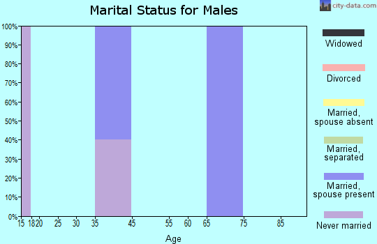 Zip code 47392 marital status for males