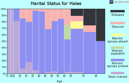 Zip code 47562 marital status for males