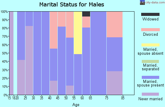 Zip code 47564 marital status for males