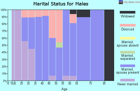 Zip code 47588 marital status for males