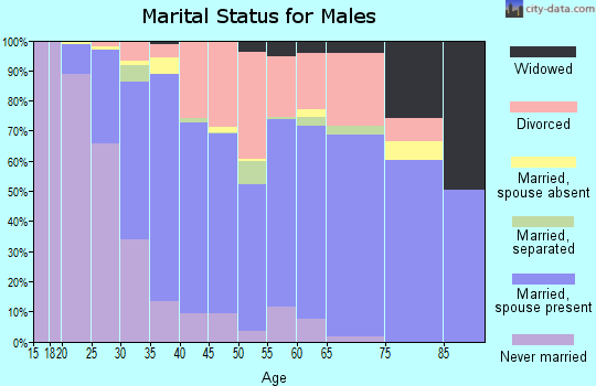 Zip code 47803 marital status for males