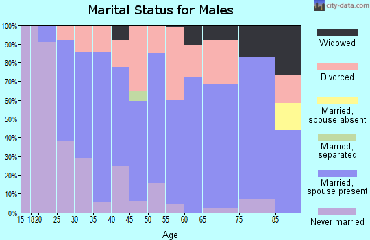 Zip code 47987 marital status for males