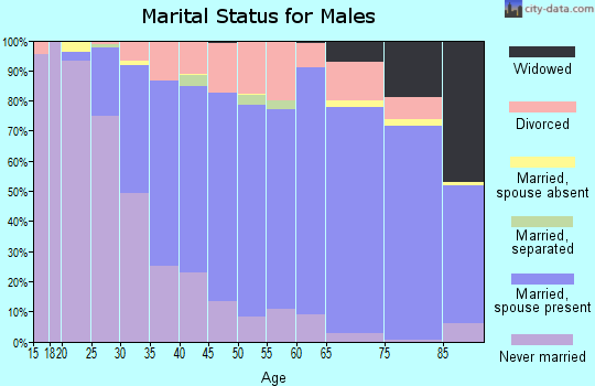 Zip code 48038 marital status for males