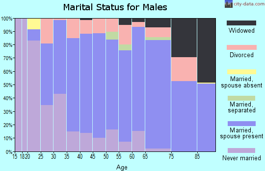 Zip code 48040 marital status for males