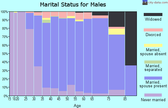 Zip code 48044 marital status for males