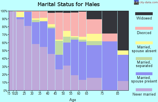 Zip code 48141 marital status for males