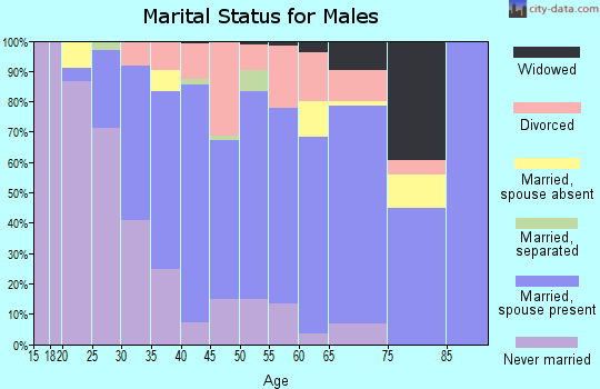 Zip code 48173 marital status for males