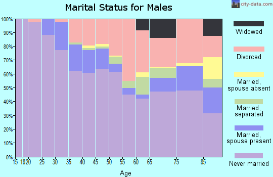 Zip code 48201 marital status for males