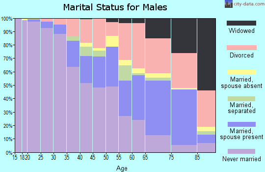 Zip code 48203 marital status for males