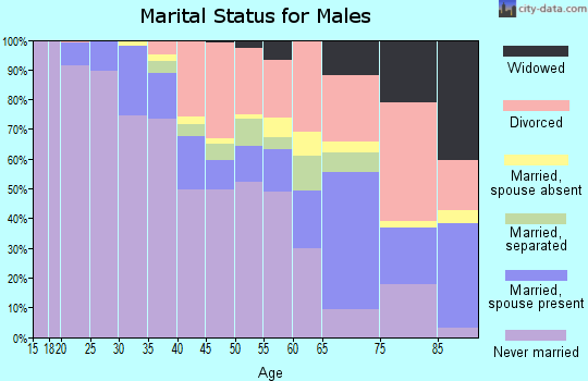 Zip code 48207 marital status for males