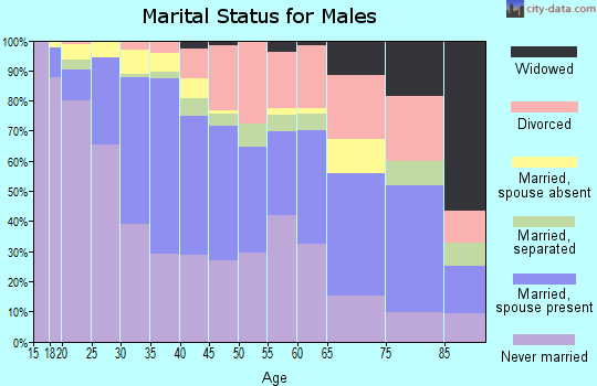 Zip code 48210 marital status for males