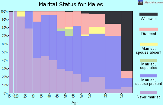 Zip code 48225 marital status for males