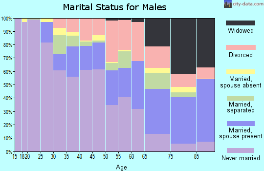 Zip code 48238 marital status for males