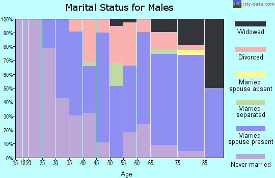 Zip code 48320 marital status for males