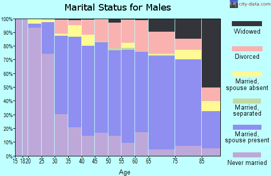 Zip code 48336 marital status for males