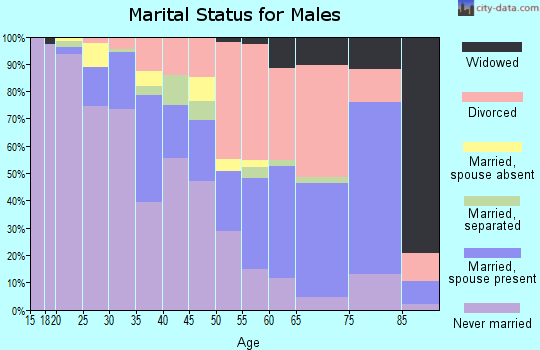 Zip code 48342 marital status for males