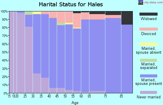 Zip code 48348 marital status for males