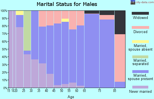 Zip code 48367 marital status for males