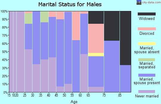 Zip code 48401 marital status for males