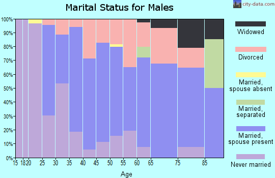 Zip code 48419 marital status for males