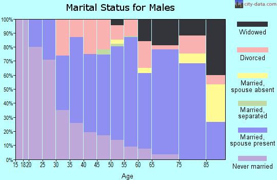 Zip code 48427 marital status for males