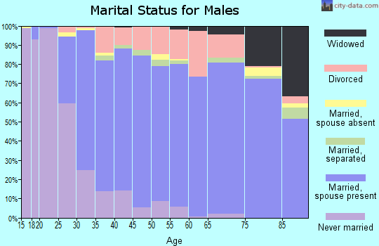 Zip code 48439 marital status for males