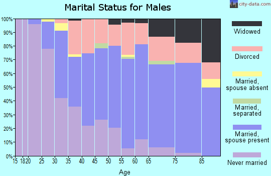 Zip code 48458 marital status for males
