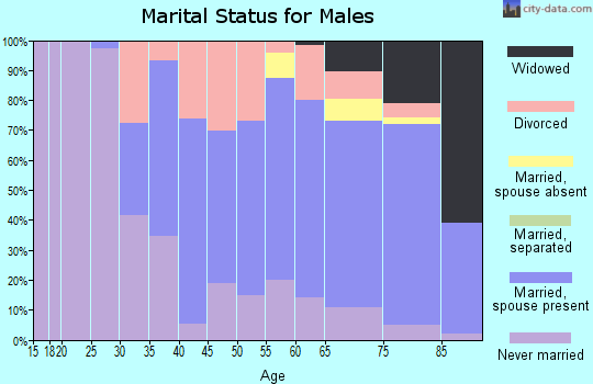 Zip code 48467 marital status for males