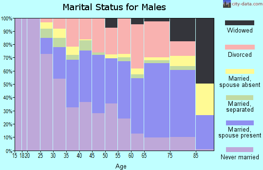 Zip code 48504 marital status for males