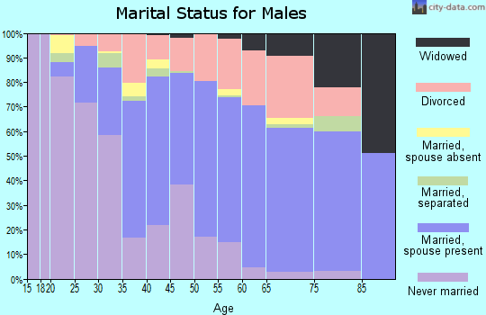 Zip code 48658 marital status for males