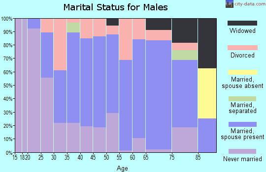 Zip code 48741 marital status for males