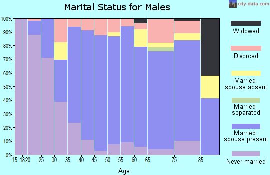 Zip code 48864 marital status for males