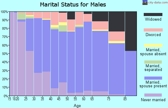 Zip code 48879 marital status for males