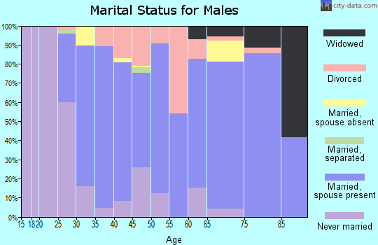 Zip code 48881 marital status for males