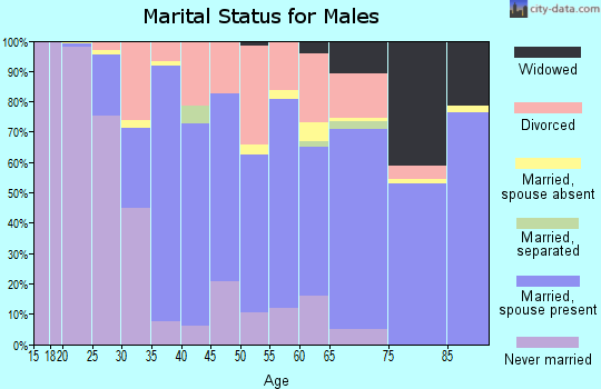 Zip code 49006 marital status for males