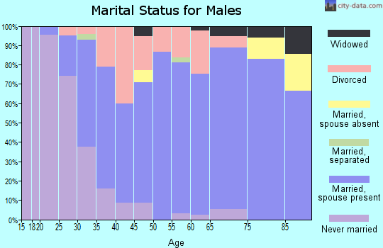 Zip code 49076 marital status for males