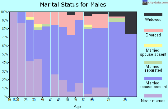 Zip code 49082 marital status for males